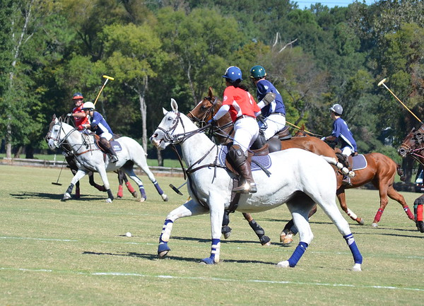 Polo in the Pines - October 8, 2016 205