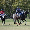 Polo in the Pines - October 8, 2016 137
