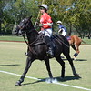 Polo in the Pines - October 8, 2016 226
