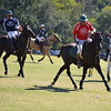 Polo in the Pines - October 8, 2016 164