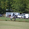Polo in the Pines - October 8, 2016 145