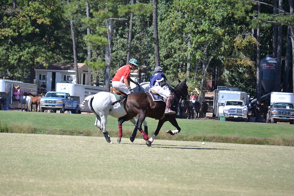 Polo in the Pines - October 8, 2016 124
