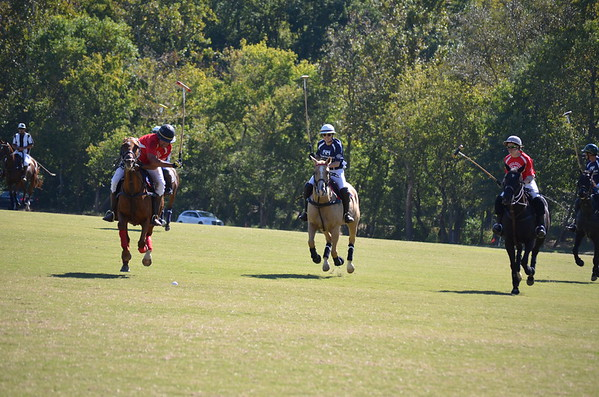 Polo in the Pines - October 8, 2016 158
