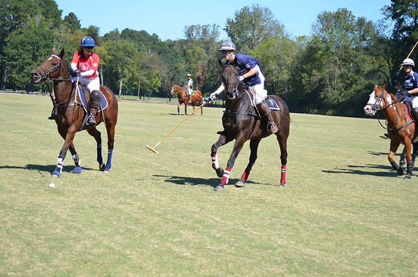 Polo in the Pines - October 8, 2016 262