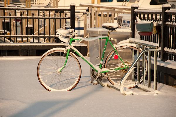 110121_Snow_34