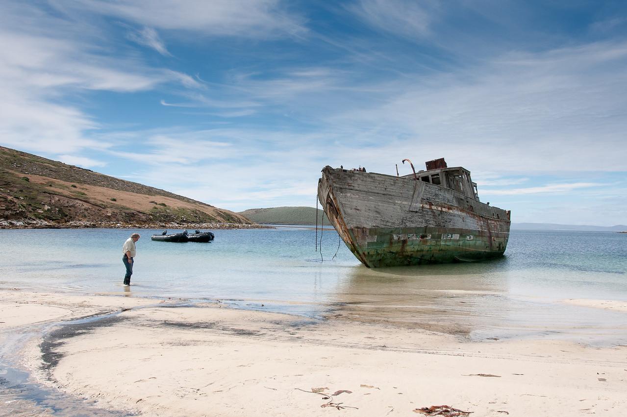 Shipwreck in New Island, Falkland Islands