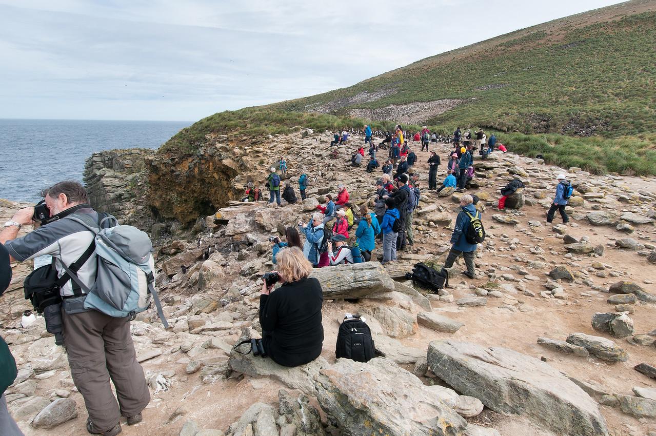Tourists in New Island, Falkland Islands