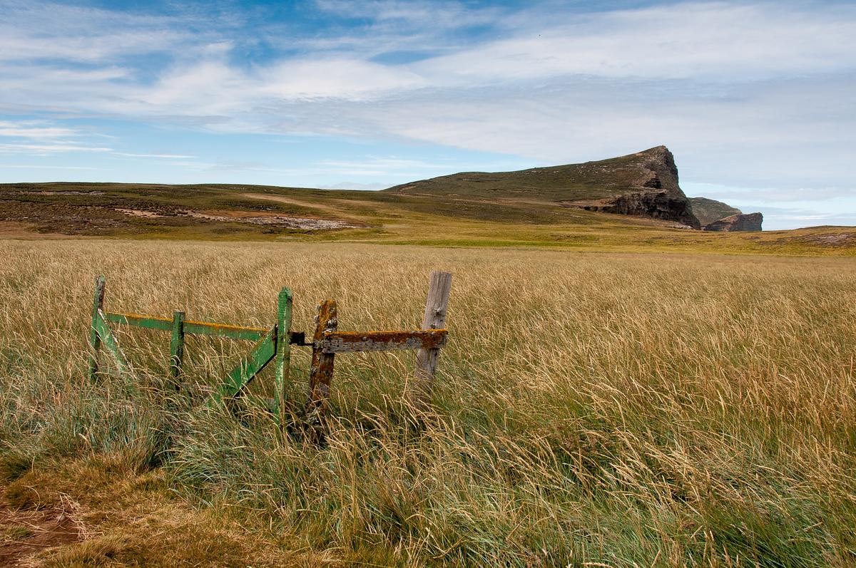 Gate in a Field, New Island, Falkland Islands