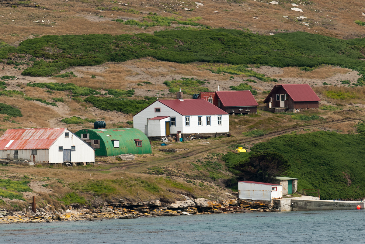 New Island Settlement, Falkland Islands