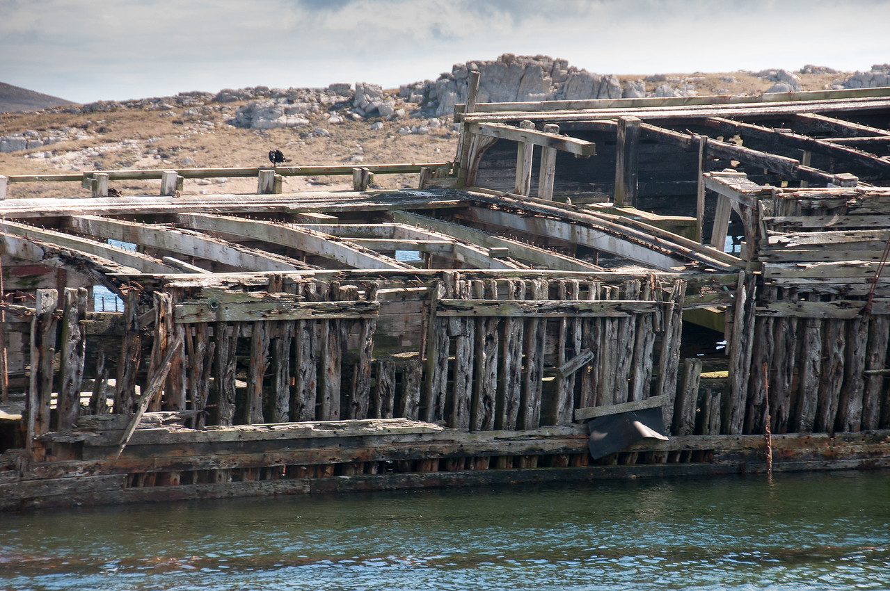 Shipwreck off a coast in Stanley, Falkland Islands