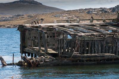 Shipwreck off a coast in Stanley, Falkland Islands