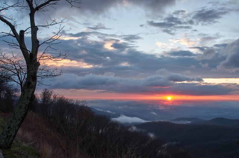 Misty Morning in Shenandoah