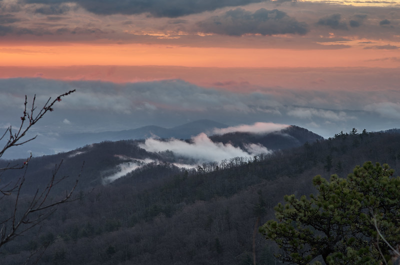 Misty Morning in Shenandoah #2