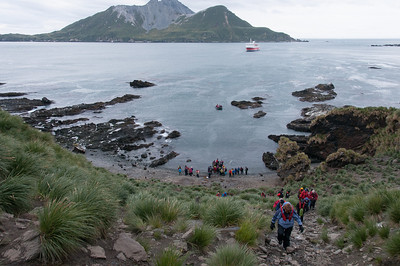 Cooper Bay in South Georgia Island