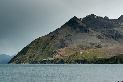 Moltke Harbor in South Georgia Island
