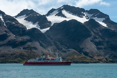 M/S Expedition at Stromness Bay