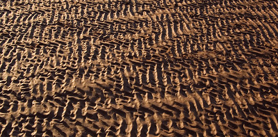 Patterns in the sand.