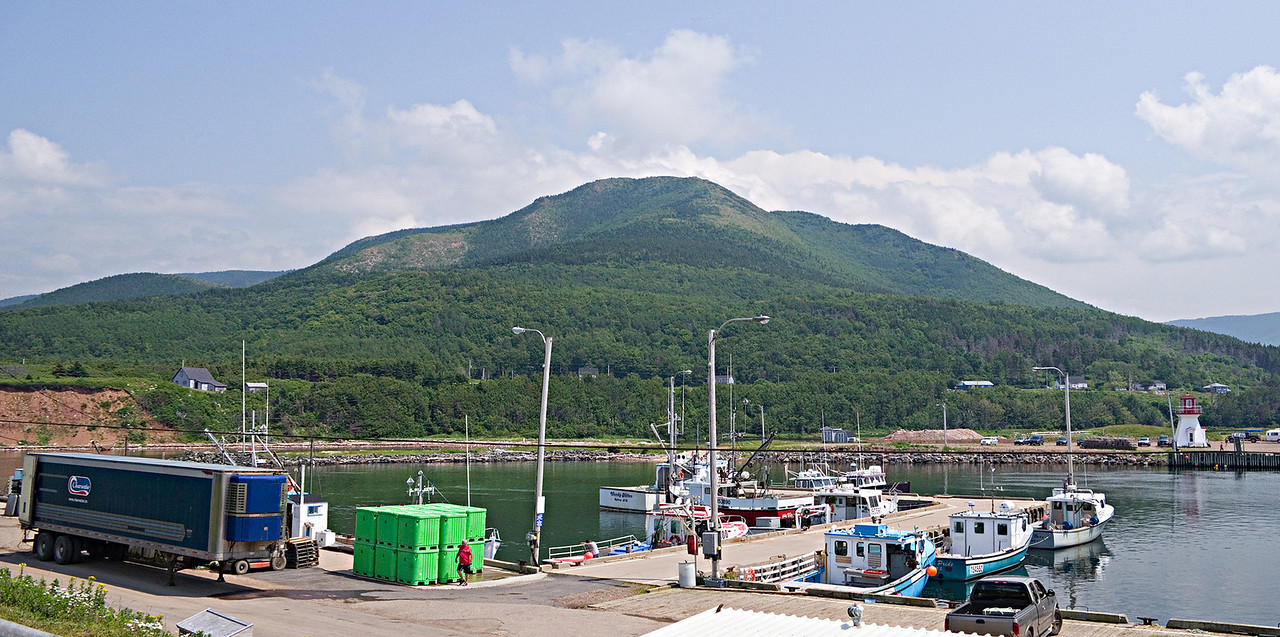 Pleasant Bay harbour with Roberts Mountain in the background