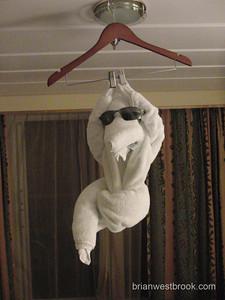 Towel art!   All photos (C) 2009 Brian M. Westbrook / brianwestbrook.com. For details: photos (AT) brianwestbrook (DOT) com