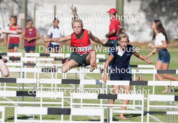 Laerskool Stellenbosch Neelsie Prestige Atletiek 2015