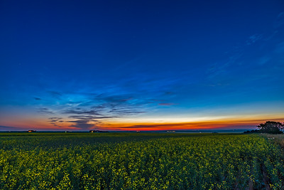 Noctilucent Clouds in Twilight (July 8, 2021)