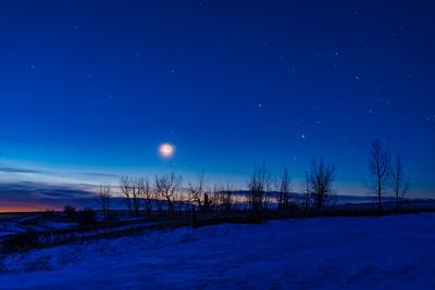 Scorpius Rising with Moon and Mars at Dawn