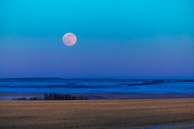 Full Moonrise of February
