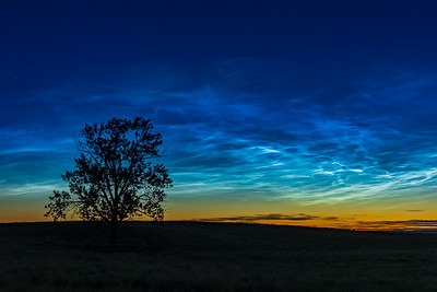 Brilliant Noctilucent Clouds at One Tree Hill (June 16, 2021)