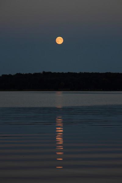 Moonrise Over Bass Lake