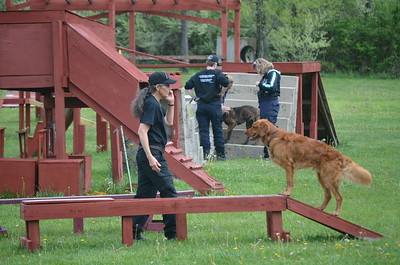Agility Photos & Video Atterbury 2016