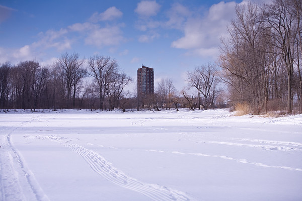 Ford's Cove looking West toward Nine Mile Tower