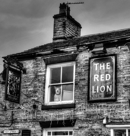 White wolf and red lion (both for sale on the high street)<br /> Bollington, Manchester