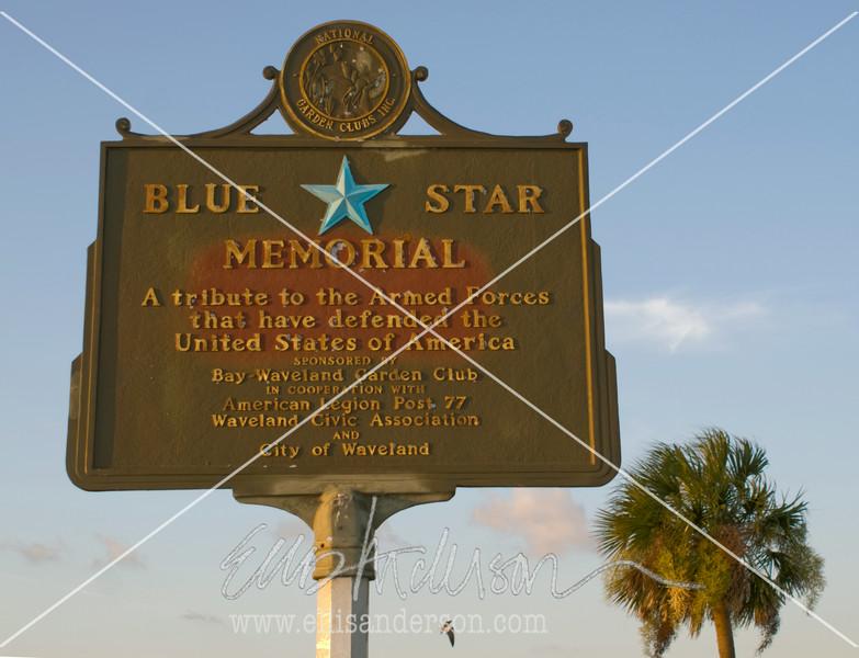 10   Blue Star memorial 1890