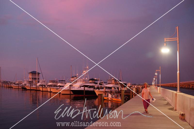 Harbor Fest 2015 9132
