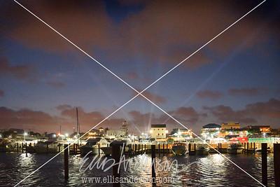 Harbor Bridgefest 2014 7458
