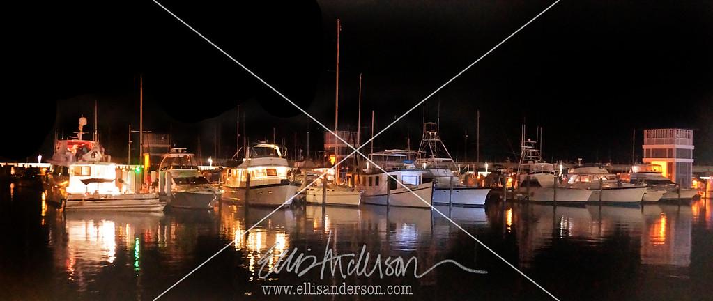 Harbor Fest 8946