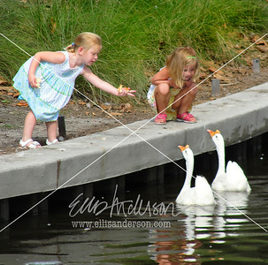girls and ducks 2595