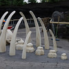 The new whale bone play structure