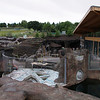 The sea lions' new winter retreat