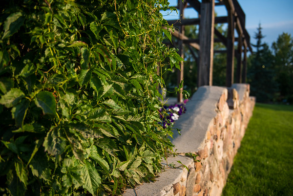 Leduc Cultural Village plants