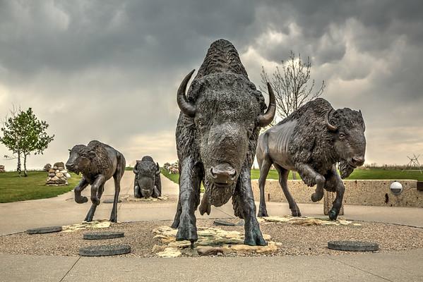 Buffalo Statues