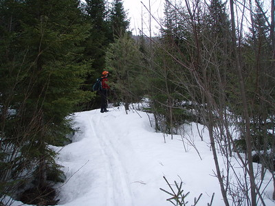 The trail wanders over easy terrain for a mile.