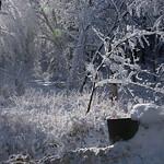 Auburn NH Winter Wonderland 25