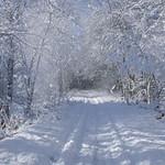 Auburn NH Winter Wonderland 78