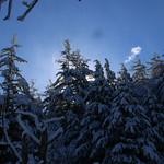 Auburn NH Winter Wonderland 72