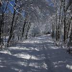 Auburn NH Winter Wonderland 60