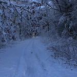 Auburn NH Winter Wonderland 32