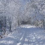 Auburn NH Winter Wonderland 77