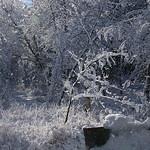 Auburn NH Winter Wonderland 28