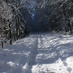 Auburn NH Winter Wonderland 87